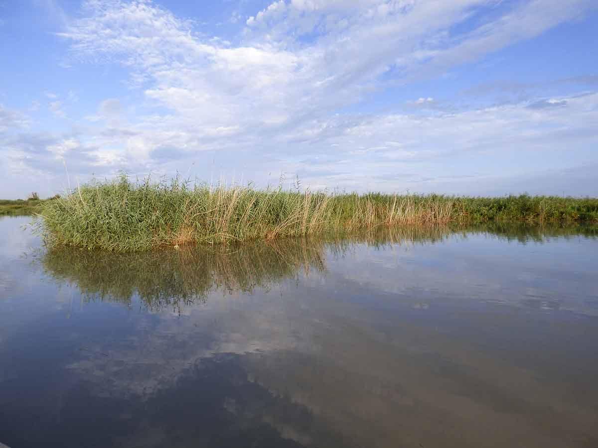 Loire dans l'estuaire