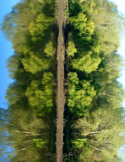 Loire verte