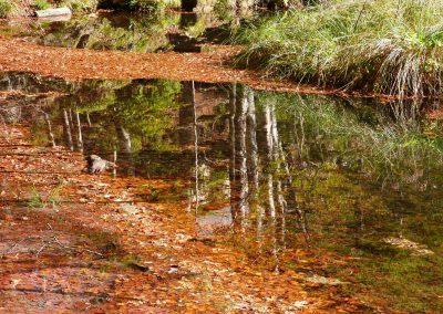 Bethmale et ses lumières d'automne 02