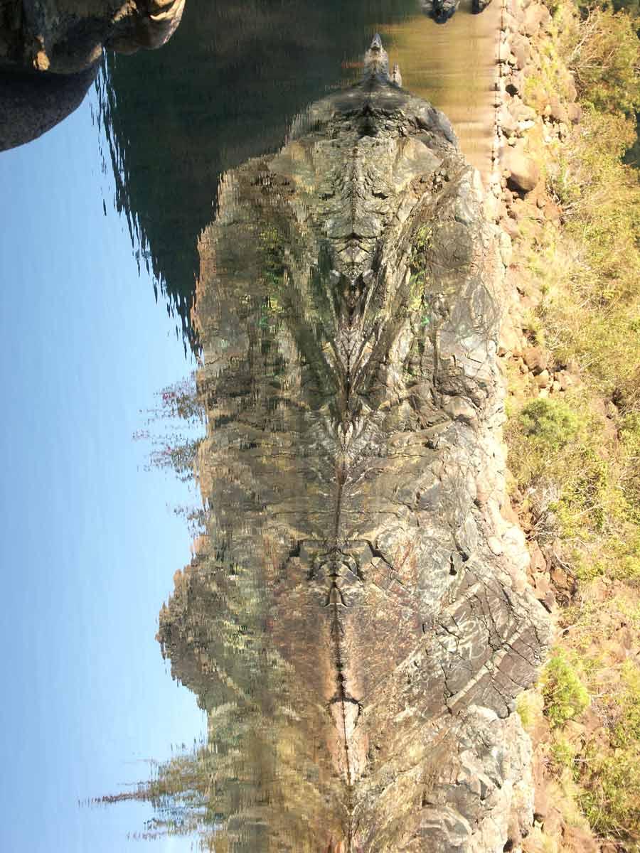 Apparition d'Isis, la plus illustre des déesses égyptiennes sur les rives de la Dumbea, bordées de roche de nickel.