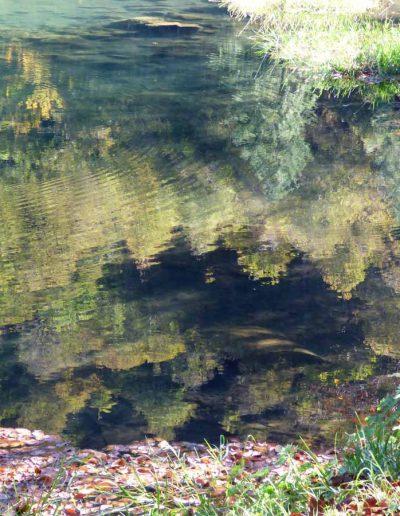 reflets-et-profondeurs